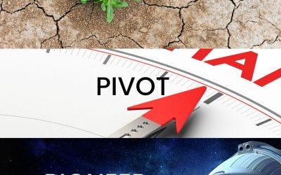 Persevere, Pivot, Pioneer